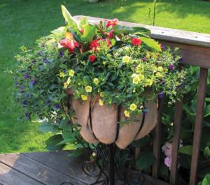 gardeninga