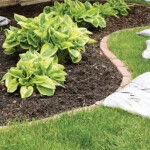 Mulch Matters | The Many Benefits for Lakeside Landscapes